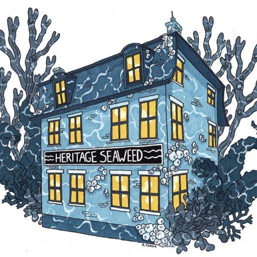 Heritage Seaweed in Portland, Maine