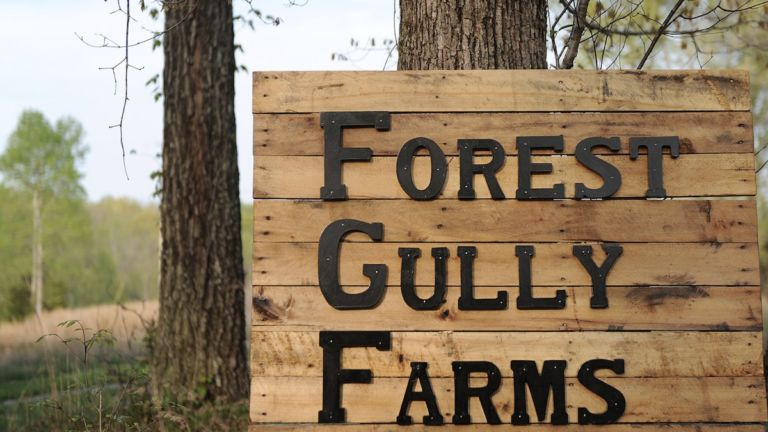 Forest Gully Farms