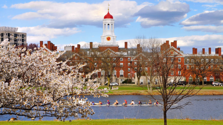 Harvard University in the spring