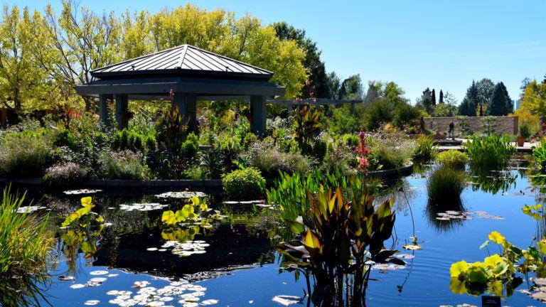 Denver Botanic Gardens. Pic via Shutterstock.