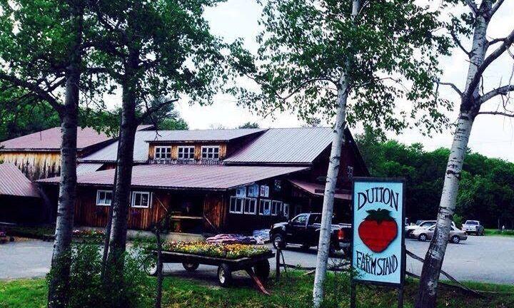 Dutton Farm