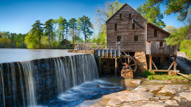 Yates Mill County Park, Raleigh. Shutterstock