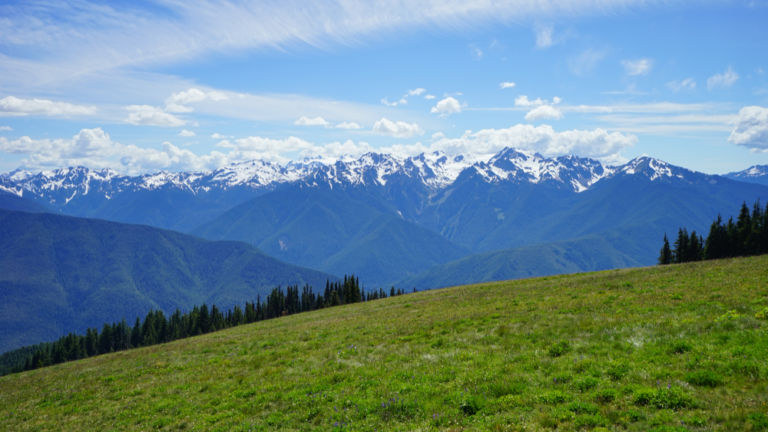 Olympic National Park, Seattle. Shutterstock