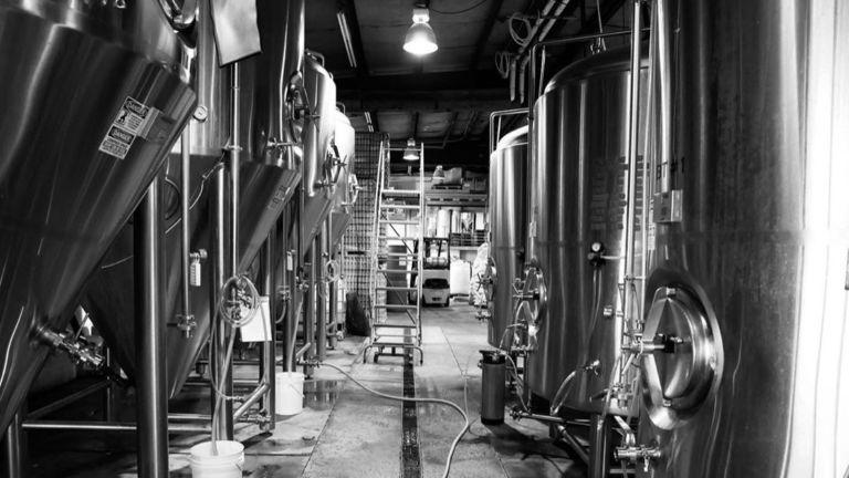 Bier Brewery & Taproom