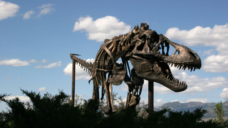 Museum of the Rockies, Montana. Photo credit: Shutterstock.