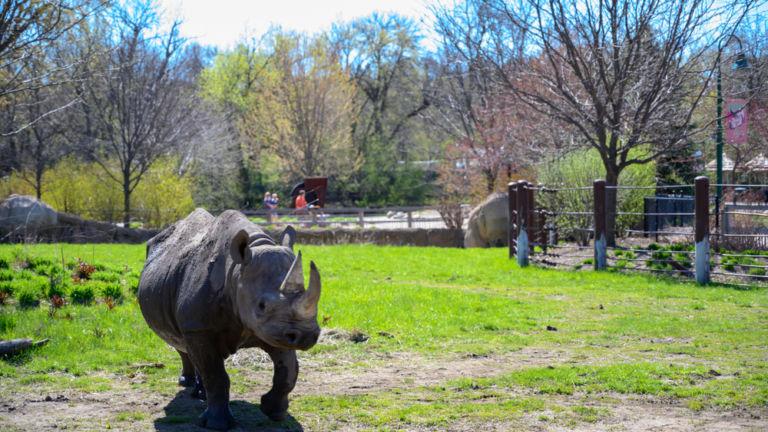 Great Plains Zoo, Sioux Falls, South Dakota. Pic via Shutterstock.
