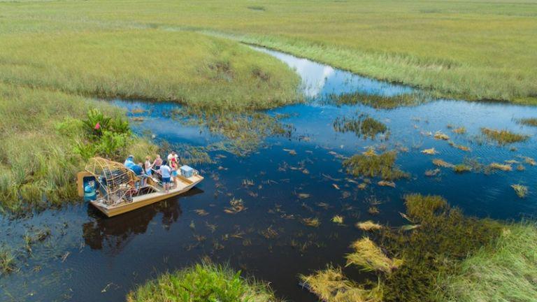 Everglades National Park. Photo credit: Shutterstock.