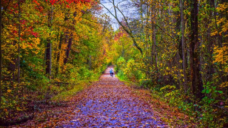 Swamp Rabbit Trail in Greenville, South Carolina. Photo credit Shutterstock.