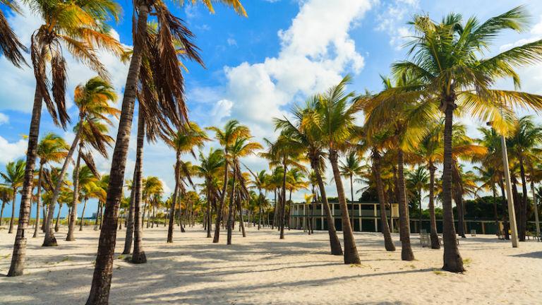 Crandon Park in Key Biscayne in Miami. Photo via Shutterstock.