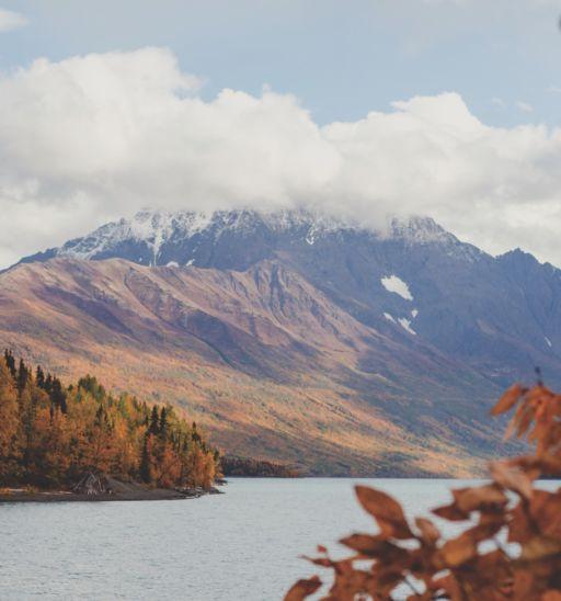 Alaska landscape. Photo by Ellen Carty.