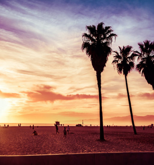 Venice Beach, Calif. Photo via Shutterstock.