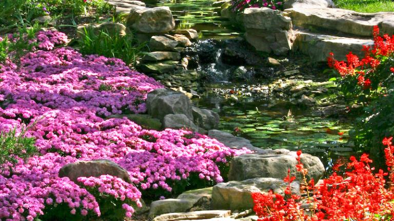 Botanica, the Wichita Gardens, in Wichita, Kansas. Photo via Shutterstock.