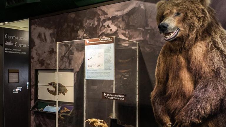 The Museum of World Treasures in Wichita, Kansas.