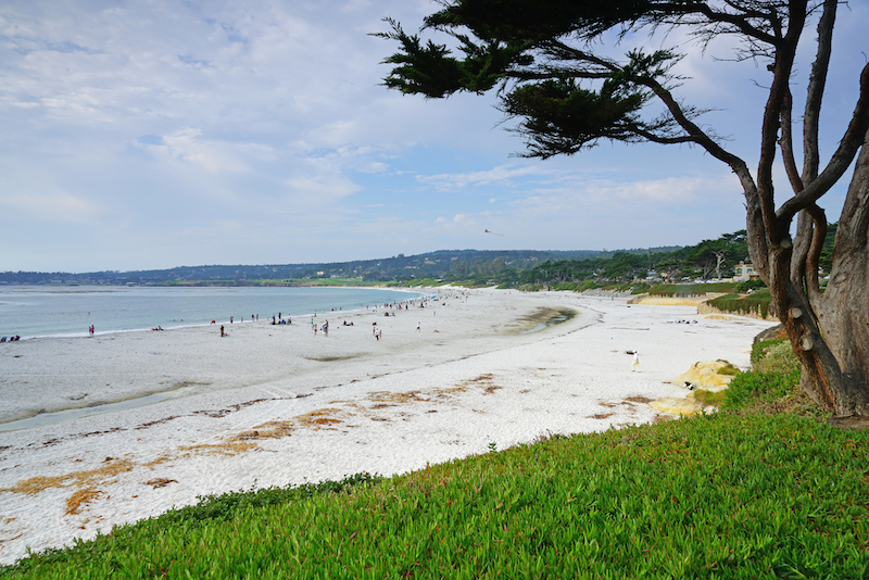 Best Beaches in America: View of the Carmel Beach, a beach on the Pacific Ocean in Carmel-by-the-Sea, Calif. Photo by Shutterstock.