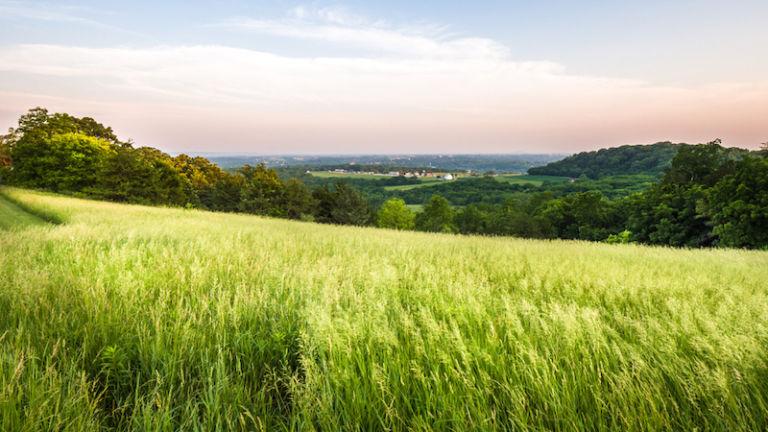 Horseshoe Mound Preserve